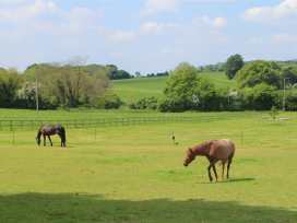 The Stables, Upham - South Coast England - 988878 - thumbnail photo 22