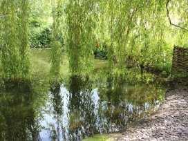 Hillview Cottage - Kent & Sussex - 988913 - thumbnail photo 13