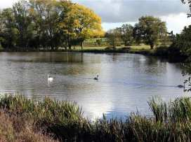 Waldron Farm Barn - Cotswolds - 988944 - thumbnail photo 32