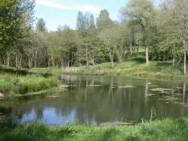 The Milking Parlour - Somerset & Wiltshire - 988956 - thumbnail photo 13