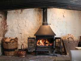 Vale Cottage - Dorset - 988968 - thumbnail photo 7