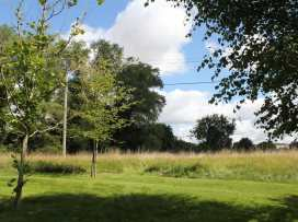 The Stable, Broadchalke - Somerset & Wiltshire - 988977 - thumbnail photo 20