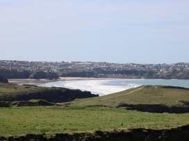 Beech - Cornwall - 990052 - thumbnail photo 15