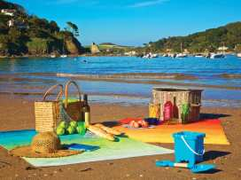 1 The Salcombe - Devon - 994868 - thumbnail photo 12