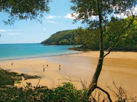 7 Island Quay - Devon - 995165 - thumbnail photo 21