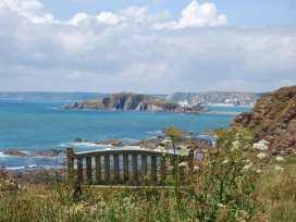 Cottage View - Devon - 995345 - thumbnail photo 23
