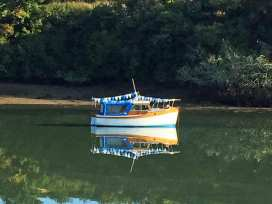 Crab Cottage - Devon - 995362 - thumbnail photo 23