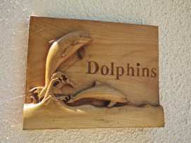 Dolphins - Devon - 995389 - thumbnail photo 17
