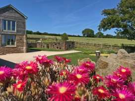 Higher Hill Barn - Devon - 995499 - thumbnail photo 33
