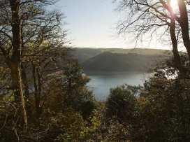 Sunnylodge - Devon - 995842 - thumbnail photo 25