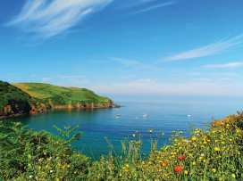 Cove View - Devon - 995868 - thumbnail photo 24