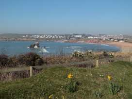 Sea Campion - Devon - 998671 - thumbnail photo 27