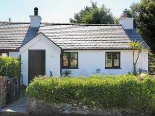 Cosy Cottage - 1008789 - photo 1