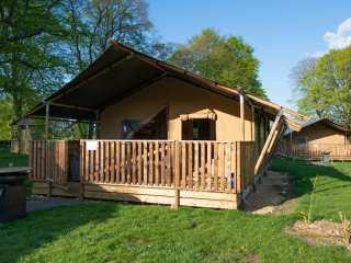 Goldfinch Safari Tent - 1014819 - photo 1