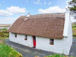 The Thatch photo 1