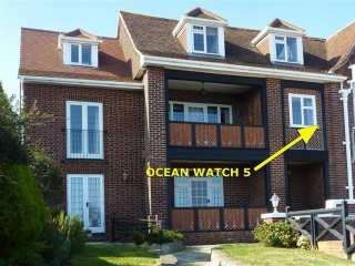 Ocean Watch 5 - 994506 - photo 1