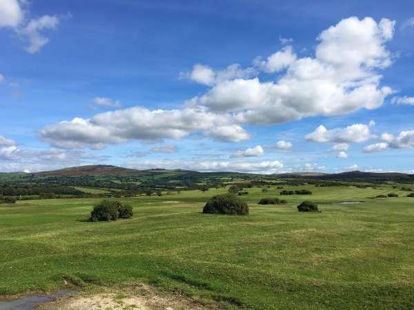 Edgemoor photo 1