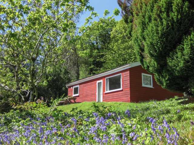 Bluebell Lodge - 962651 - photo 1