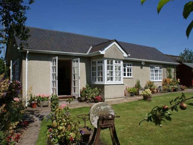 Wolston Cottage - 976157 - photo 1