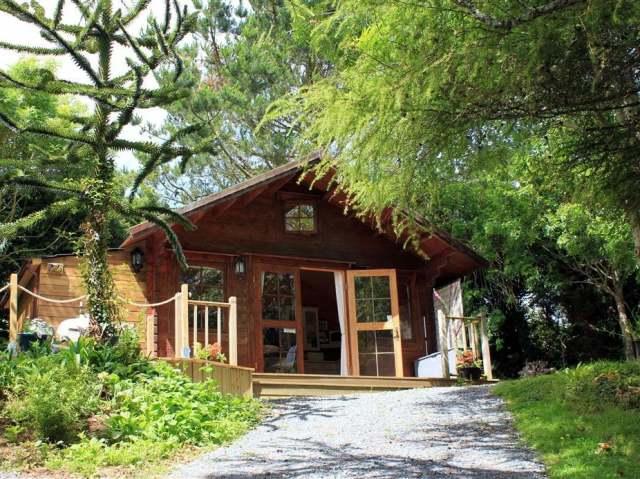 The Cabin photo 1